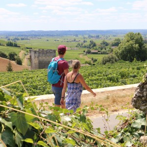 A stroll through the Saint-Emilion wineyards