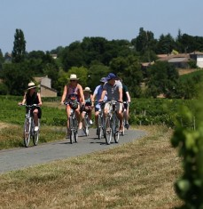 Wine and bike tour in the vineyards of Saint-Emilion