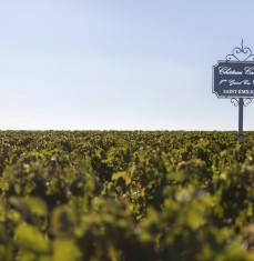 "The 2 days ""stones and wine"" tour from Saint-Emilion to Bordeaux"