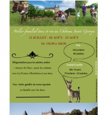 family workshop: donkeys and wine at Château Saint-Georges
