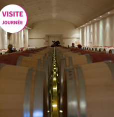 Saint-Emilion and Médoc day tour
