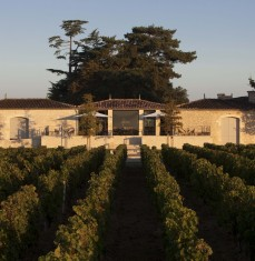 Wine tastings, visits and workshops at the chateau