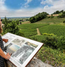 20 places to discover the Jurisdiction of Saint-Emilion