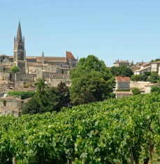 Full day in Saint-Émilion - private tour