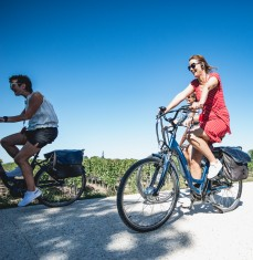 Rustic Vines - E-bike tours