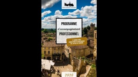 PROGRAMME D'ACCOMPAGNEMENT PROFESSIONNEL